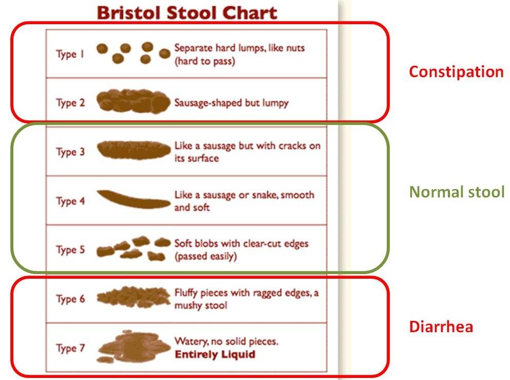Bristol stool chart for assessment IBS subtype